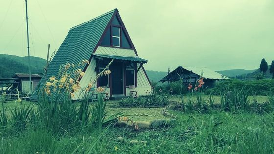 Maple Pine Farm in Meghalaya