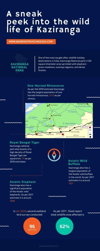 An infographics of Kaziramga National Park