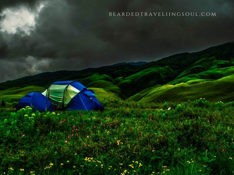 Camping in Dzukou Valley is always fun provide you follow the responsible way