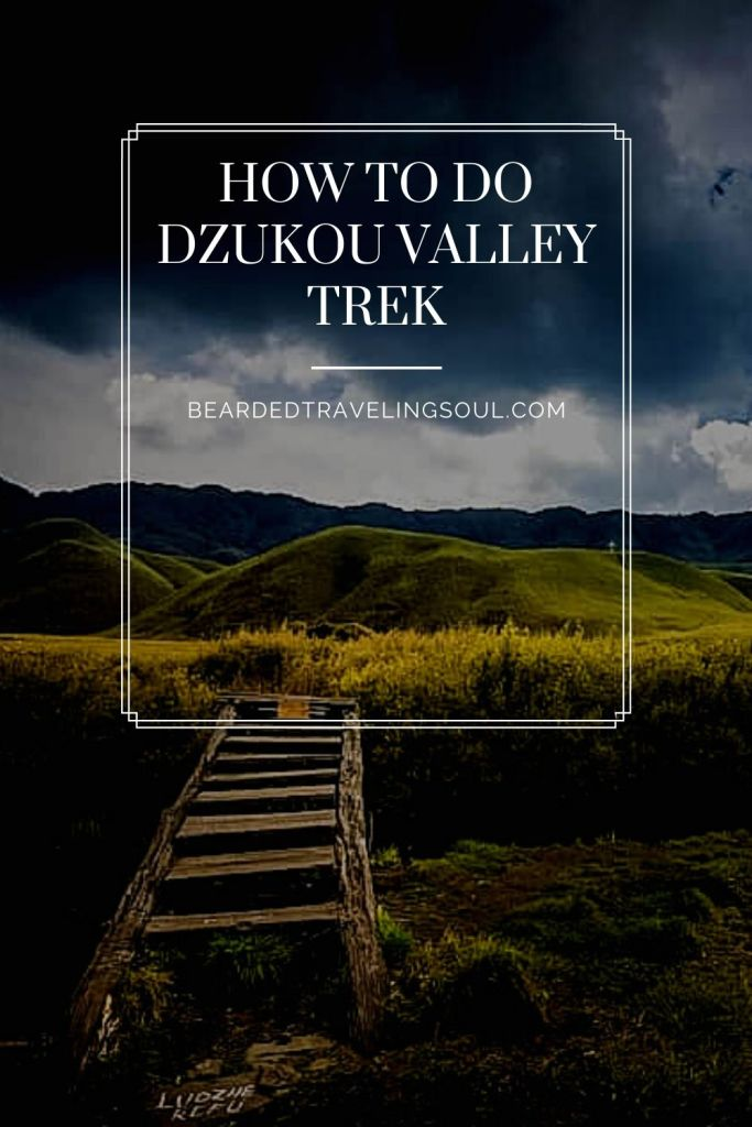 Dzukou Valley Trek 2 Pinterest