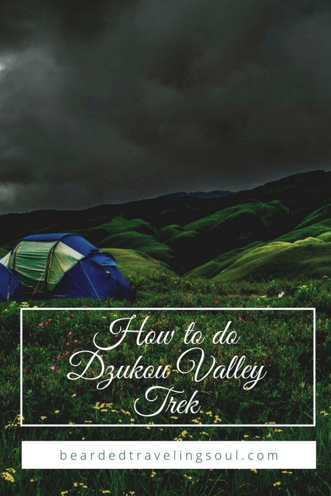 Dzukou Valley Trek Pinterest 3